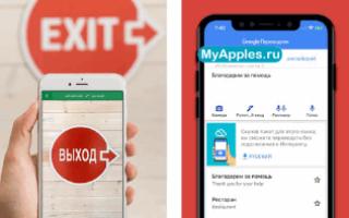 ТОП-5 лучших фото переводчиков на iPhone для моментального перевода текстов