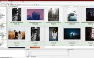 Лучшие бесплатные просмотрщики изображений — 5 программ