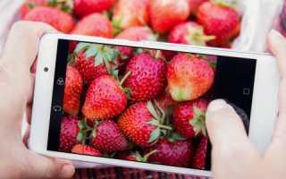 Что такое плотность пикселей и как её учитывать при проектировании мобильных интерфейсов