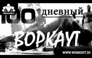 Описание тренировочного комплекса «100 дней воркаута»