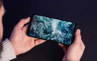 Обзор Honor 8X Max — лучший недорогой смартфон с большим экраном