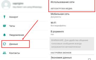 Как сохранить голосовое сообщение из Whatsapp: инструкция